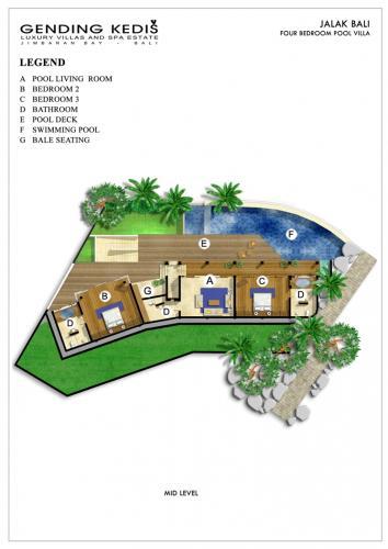 Jalak-Bali-mid-Level-Potrait1